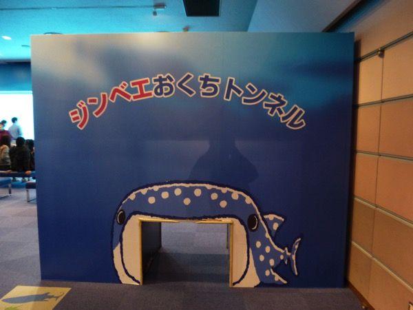 八景島シーパラダイス・水族館レポ