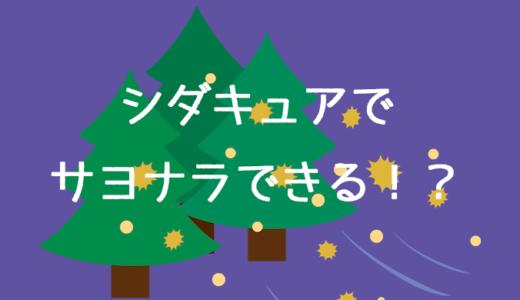 【シダキュア体験談】効果はあるの?費用は?【ブログ】
