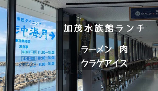 【加茂水族館・ランチ】クラゲ中華そばって美味しいの?肉料理は!?【クラゲソフトクリーム・アイス】